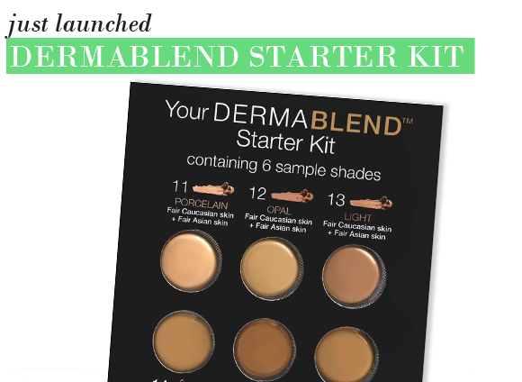 Serious skin coverage the vichy dermablend starter kit for Dermablend tattoo cover up video