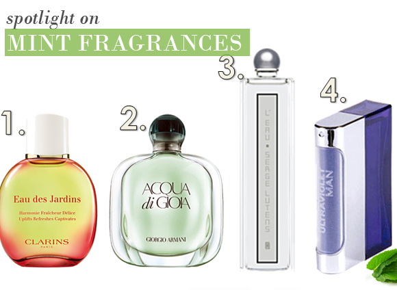 Fragrances With Mint