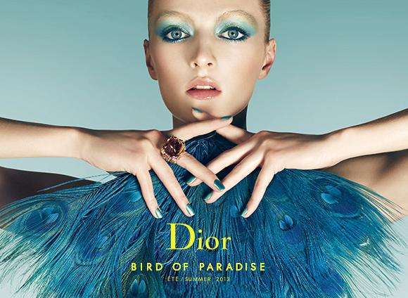 Dior Bird of Paradise Banner
