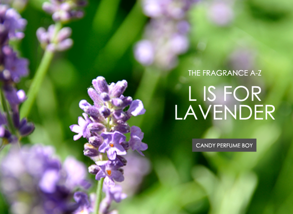 L Is for Lavender
