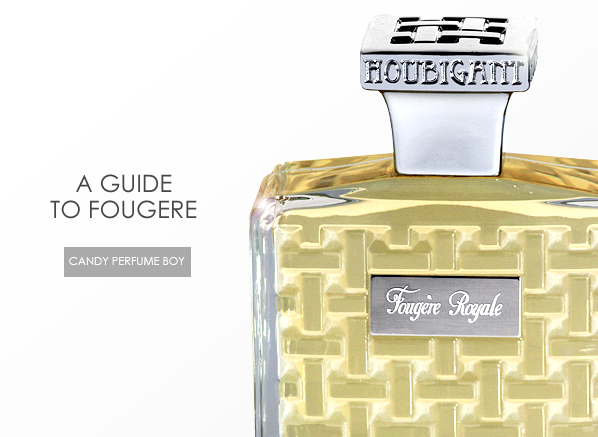 A Guide to Fougere