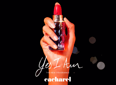 Cacharel Perfume Cologne Fragrances Authorised Cacharel Stockist