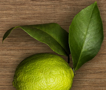 Crabtree & Evelyn West Indian Lime
