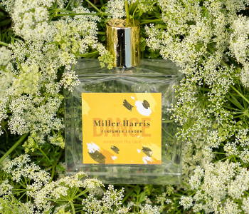 Miller Harris Forage Collection