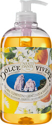 Nesti Dante Dolce Vivere Capri Liquid Soap 500ml