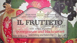Nesti Dante Il Frutteto Pomegranate and Blackcurrant Soap 250g