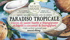 Nesti Dante Paradiso Tropicale St. Barth's Coconut and Frangipani Soap 250g